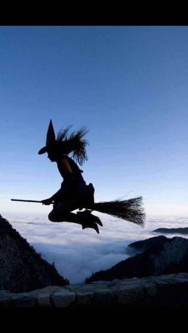 Демотиваторы ведьма на метле